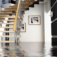 Water Damage Cleanup in Hollywood