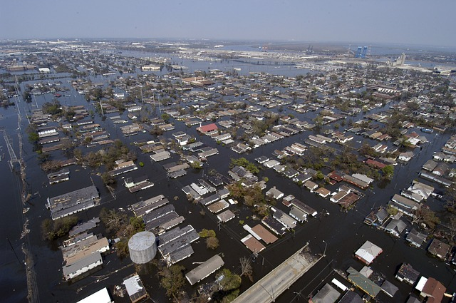 Water Damage company (new orleans)