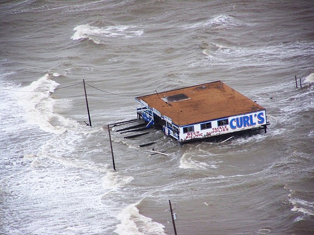 flood damage hollywood