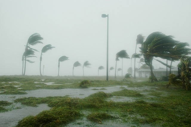 South Florida Hurricane Irma